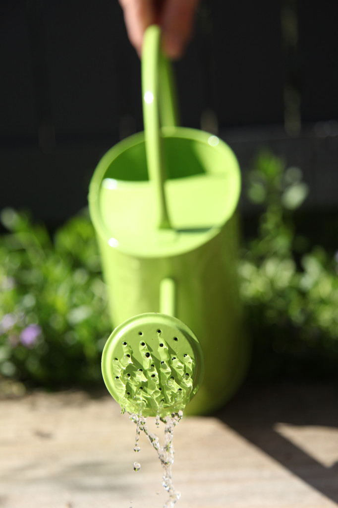 Green watering can pouring water